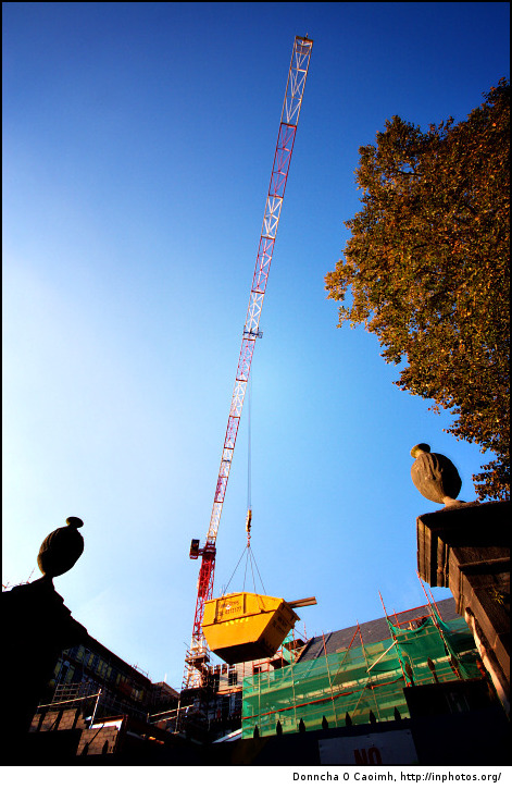 Mini skips flying high