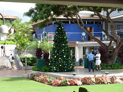 a commercial christmas in hawaii #4