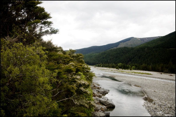 Wairau River Valley, New Zealand