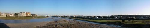 Tamagawa river
