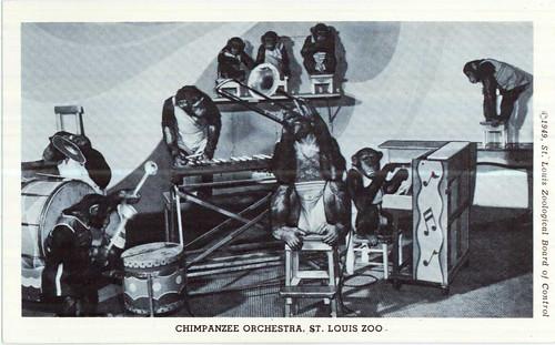Chimpanzee Orchestra.jpg