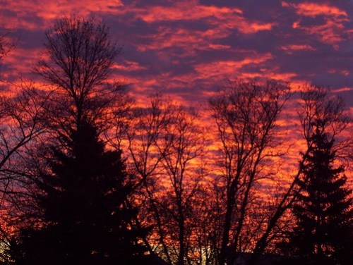 Early Morning Sky