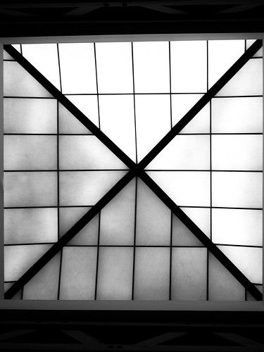 roofwindow BW