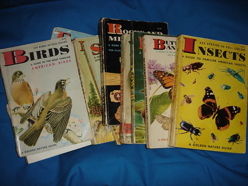 my vintage 1955 schoolbooks