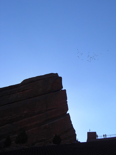 Birds at Red Rocks