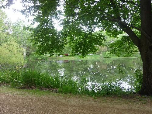 IL - Woodhaven Lakes 013