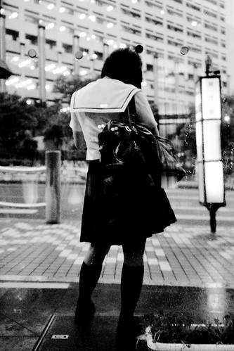 Okinawa Snap.Big girl