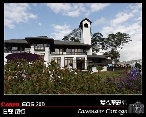 LavenderCottage_0022
