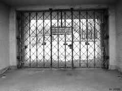 KZ-Gedenkstaette Buchenwald 15