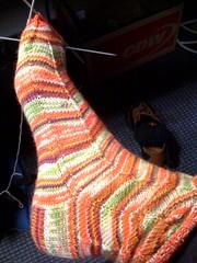Socks_2008Mar31_Trekking158WIP