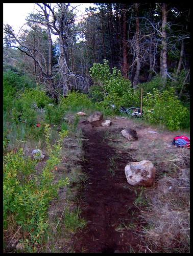 Creek Trail