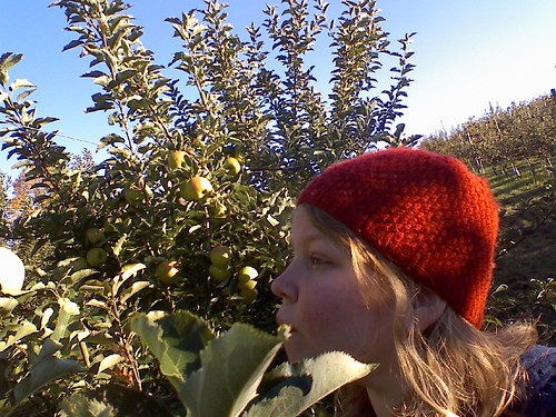 Linds Apple Picking