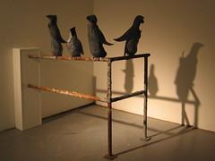 Pigeon Penguins