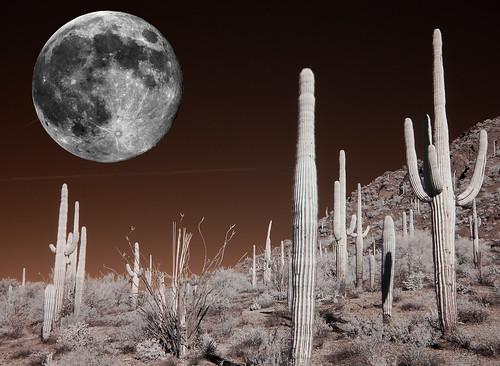 Lunar Fantasy by Bill Gracey