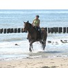 riding at the beach