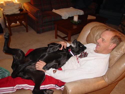 I'm a lap dog. Really.