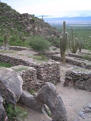 Des terrasses, des labyrinthes: une cité bien organisée