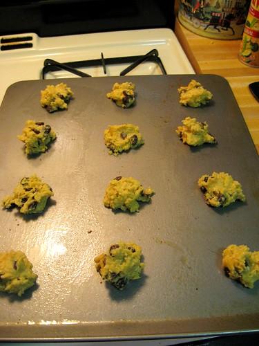 Oatmeal Raisin Cookie Dough #1