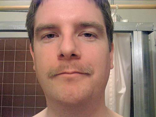apache beard day 28 - the end
