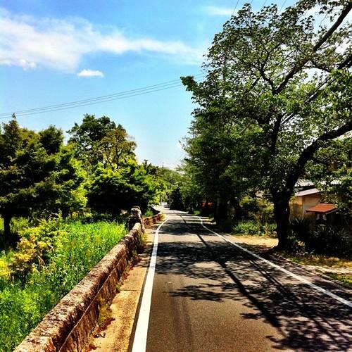 竜田川の横の道です。 #Nara #afternoon