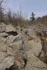 Flickr Outing Luskville Falls, Luskville, Quebec