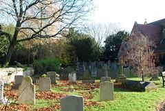 Graveyard/Garden