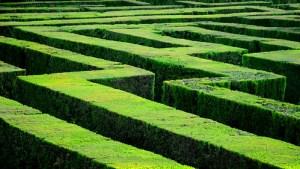 medical provider network maze