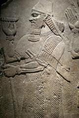 NYC: Brooklyn Museum - Reliefs of King Ashur-n...