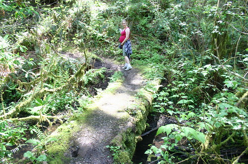 Cougar Mountain - Terrace Trail - Vicky's Belly at Boulder Grove (By Ryan Somma)