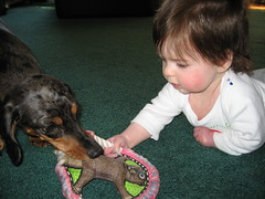 Jackson, I want to play!