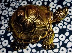 Turtle Token