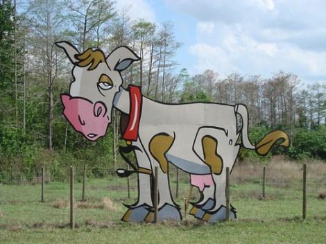 Cow @ Langerado 2008