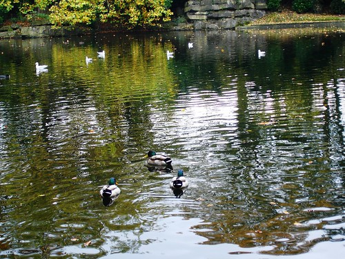 St Stephen's Green pond