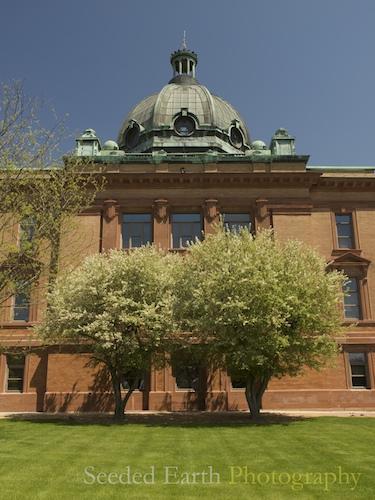 137. Halls of Justice