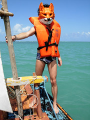 MISTER FOX AND   THE BLUE SEA