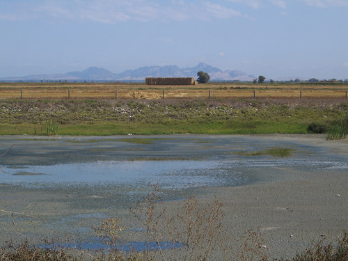 Day 02 - Sutter Buttes