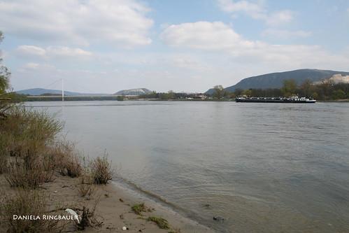 Donauauen