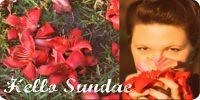 red Hello Sundae