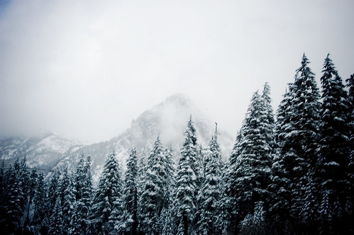 snowplay_49