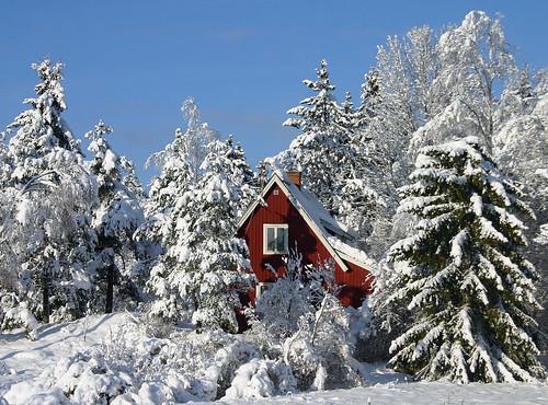 Winter in Sweden - foto: Steffe, flickr