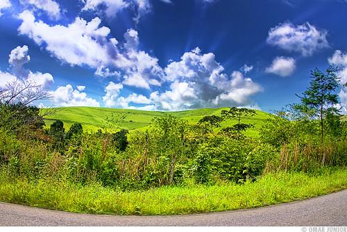 . Somewhere in Alagoas [2]
