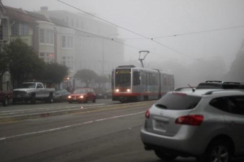M Navigating the Fog