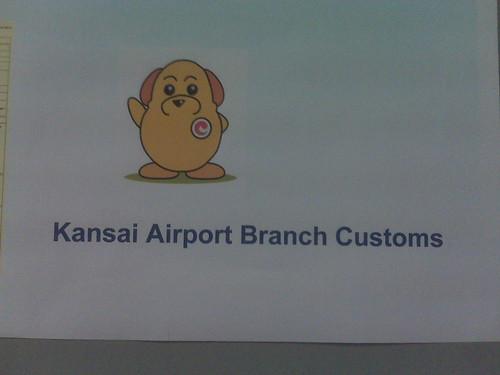 Close up of Customs Dog