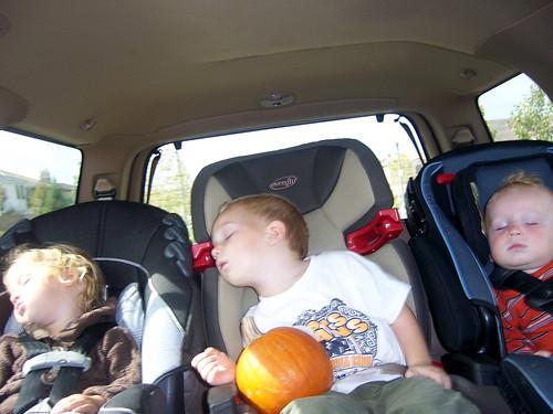 pumpkin patch 011