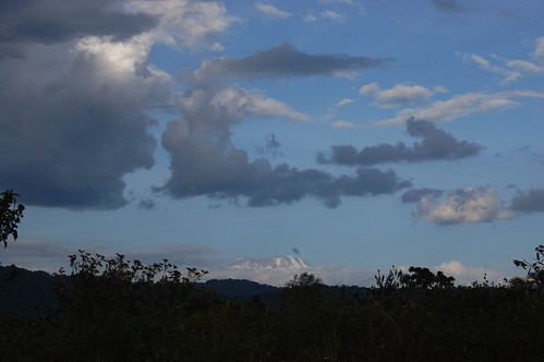 Kilimanjharo as seen from Arusha National Park, Tanzania