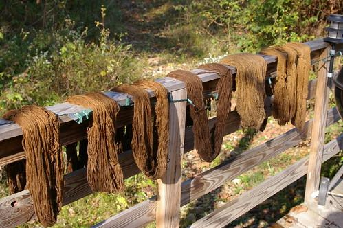 walnut dyed yarn all