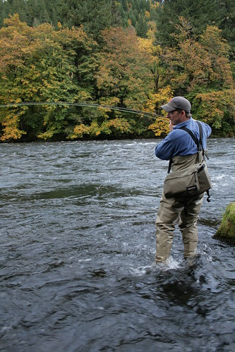McKenzie River October Caddis action