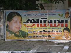 Jayalalithaa'a Poster, Chennai 1