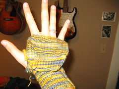 Fingerless Mittens 1