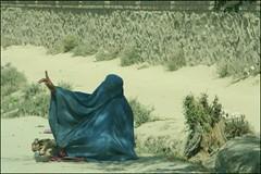 Afghanistan - begging woman